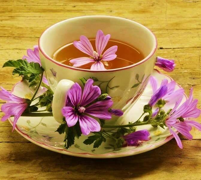 Wiosennie dla Was ode mnie. Niech poniedziałek będzie dla Was optymistyczny. Wiem, że czasem jest ciężko, ale spróbujmy się uśmiechnąć. Poniedziałki świetnie nadają się także do tego, żeby zacząć coś nowego. Można na przykład lepiej dbać o swoje zdrowie. Pozdrawiam serdecznie! Z uśmiechem. #usmiech #zdrowie #herbata #optymizm #astma