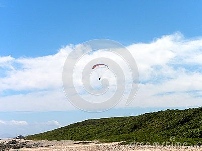 A view of a para glider sailing over a beach in South Africa.