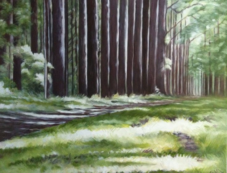 Sherbrooke forest. Oil on canvas 20x16""