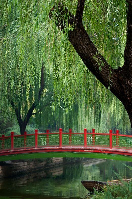 I'd pay to sit on that bridge for 30 mins :) a breathtaking surrounding!