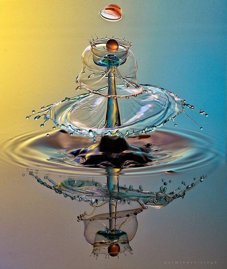 water drop by parminder singh on 500px                                                                                                                                                                                 More
