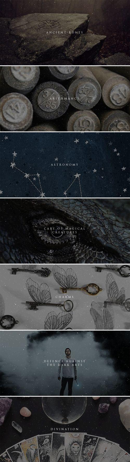 Runas Artimancia Astrología Cuidado de criaturas mágicas Encantamientos Defensa contra las Artes oscuras Adivinación