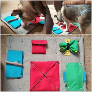 Buster Activity Mat The BEST ACTIVITY for your dog