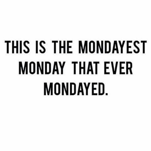 Monday Quotes Funny Beauteous 13 Best Smonday Images On Pinterest  Funny Stuff Jokes And Thoughts Design Ideas