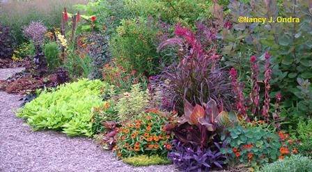Color in the Garden: Front Gardens, Color Mix, Ideas Front, Gardens Ideas, Garden Ideas, Lesley Ideas, Colors Mixed, Beautiful Gardens, Gardens Design