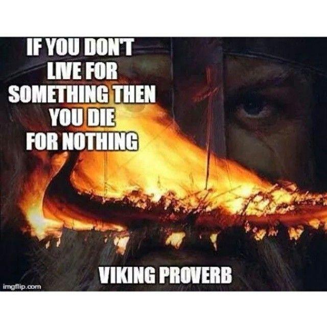 Photo of @the_viking_warriors - InstaWebgram