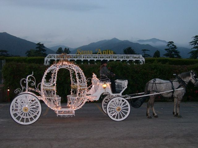pretty wedding carriage.