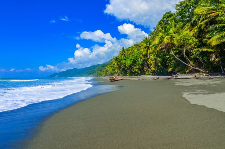 If you're into #ecotravel you must visit Corcovado National Park in Drake Bay, Costa Rica. #naturalpreserve #park, #wildlife #tropical