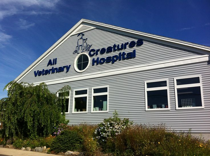 All Creatures Veterinary Hospital was built in 2003 on the banks of the North River in Salem, MA!