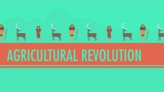 Crash Course World History is a youtube channel that offers quick lessons about world history that are entertaining for students.