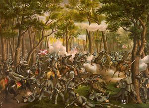 Battle of the Wilderness, Virginia (May 5-7, 1864)   Our ancestor, James Young Miller, died a few days after fighting in the Battle of the Wilderness, the first battle between Ulysses S. Grant and Robert E. Lee.   James  fought under Grant.