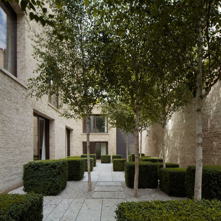 clipped box form hedges and silver birch | contemporary courtyard | pale pavers in pale gravel || David Chipperfield Architects – Private House Kensington
