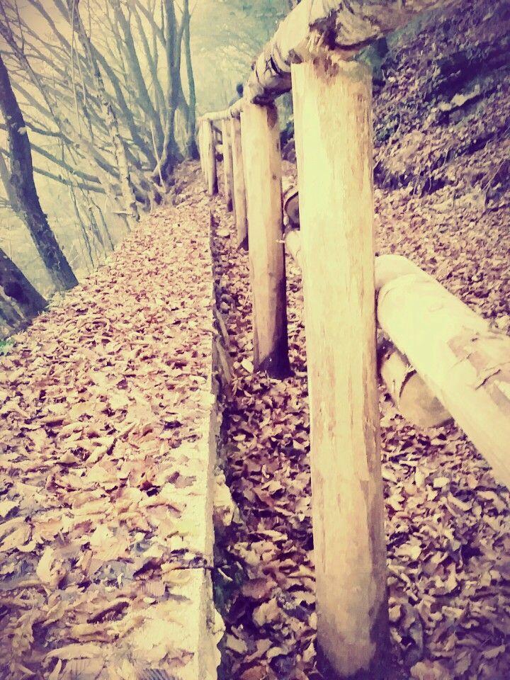 Passeggiando