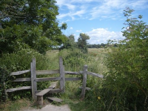 England.  Alfriston, East Sussex.    Countryside /Stile.  Photograph by Tony Gardner, 7-5-2008.