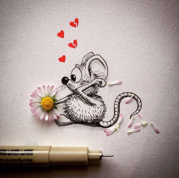 La souris Rikiki de Loïc Apreda  Dessein de dessin