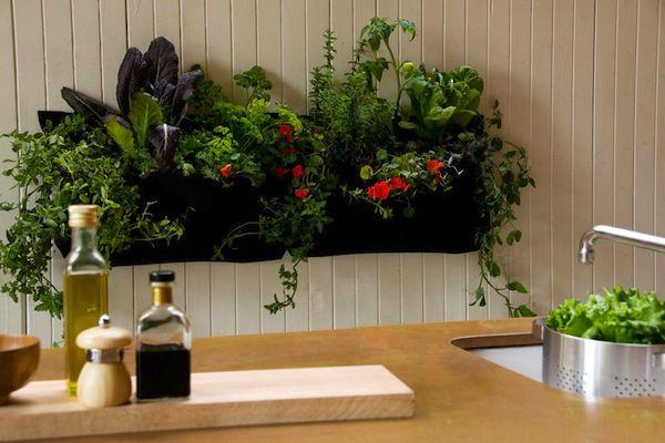 giardini verticali per interni