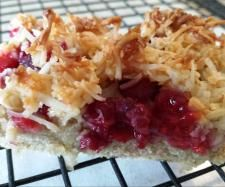 Raspberry Coconut Slice (gluten free) {Thermomix}