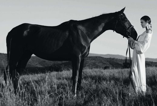 horse as landscape | mark-Segal-Harpers-bazaar