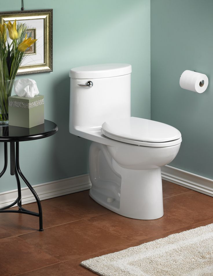 Bathroom, : Stunning Bathroom Decoration Using White Ceramic Low Flow Toilet Along With Light Blue Bathroom Wall Paint And Oak Wood Bathroom Flooring