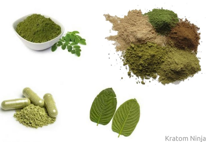 Where To Buy Kratom | Kratom For Sale - Kratom Ninja
