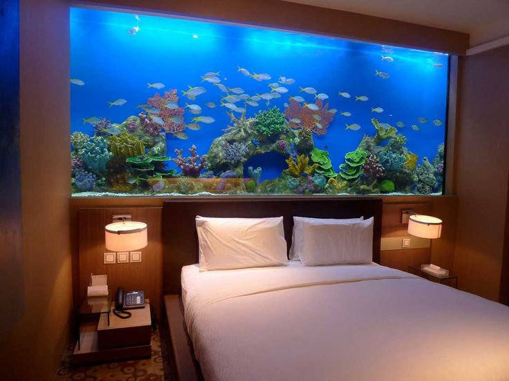 Captivating fish tank room divider for contemporary home for Fish tank bedroom ideas