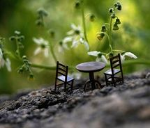 ~ teeny three-piece: Teas For Two, Sweet, So Cute, Chairs, Fairies Gardens, Dinners, Tiny Tables, Furniture, Photo