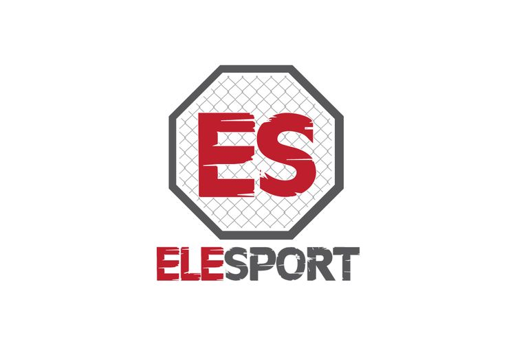 ELE Sport MMA Menagment - a bit too late concept ;)