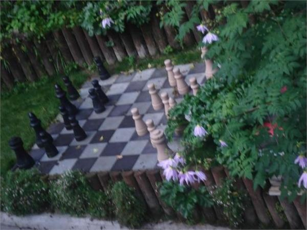 Giant Chess! - Days Bay Holiday Home Rental - 4 Bedroom, 2.0 Bath, Sleeps 8