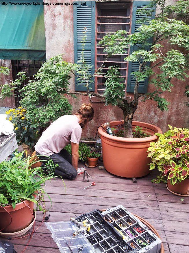 Best 25+ Irrigation companies ideas only on Pinterest | Grey water ... - garden irrigation systems design