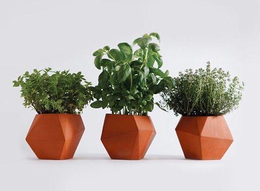 Herb pot — ACCESSORIES -- Better Living Through Design