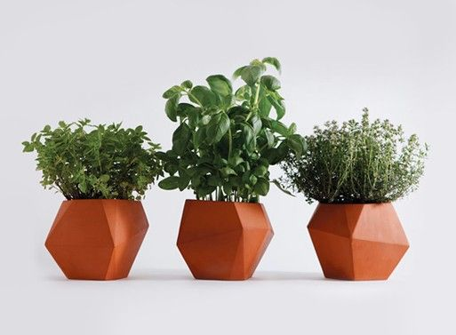 Herb pot — ACCESSORIES -- Better Living Through Design