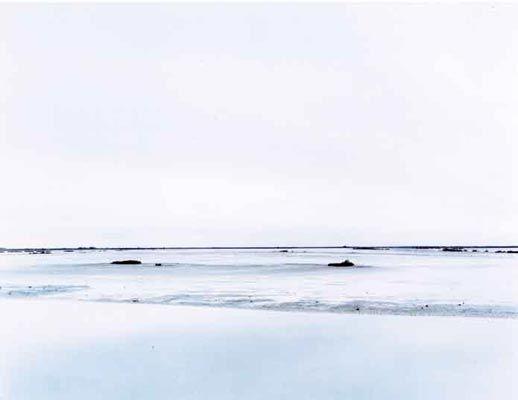 Quando finalmente staccai lo sguardo dalla stella marina e mi raddrizzai, non capivo più dove il cielo incontrasse il mare, se avessi di fronte l'acqua o la spiaggia. Ero completamente spaesata, dislocata, e in quel momento per orientarmi avevo soltanto quel faro che splendeva ai miei piedi.