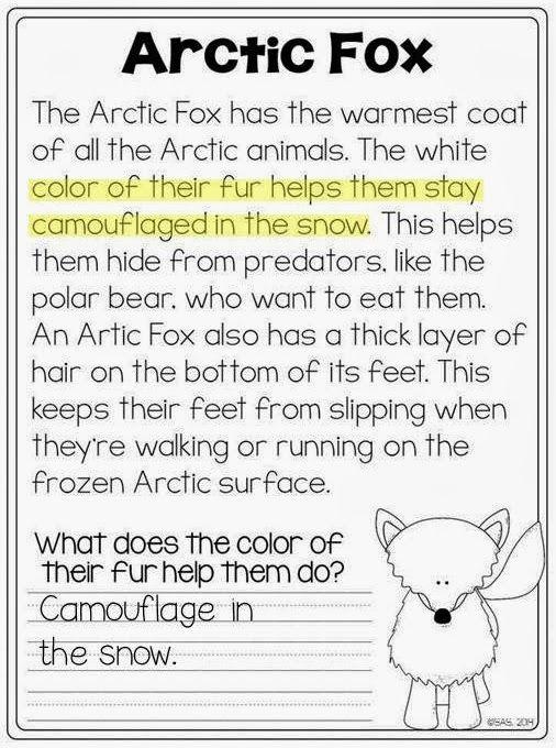 Arctic Animal close reading - 1st grade