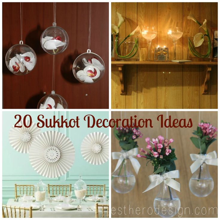 Decorating Ideas > 36 Best Images About Sukkot On Pinterest  Cabbages, Torah  ~ 090046_Jewish Holiday Decorating Ideas