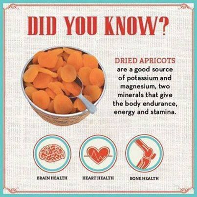Dried Apricot benefits