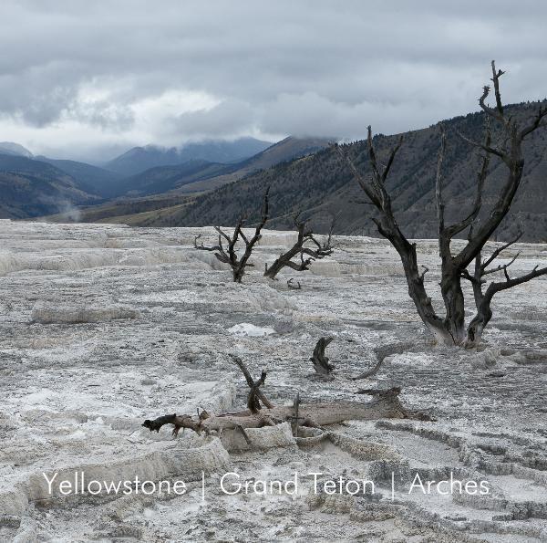 Fotografe Paulien Varkevisser bezocht een drietal Nationale Parken in de USA en legde deze vast in beeld. De parken hebben elk een geheel eigen karakteristiek.   Yellowstone National Park is het oudste Nationaal Park. Het is een vulkanisch gebied met duizenden heetwaterbronnen en honderden geisers. Prachtige kleuren, structuren en stoomwolken geven het park een bijzondere en -soms ook- mystieke sfeer. Een nagenoeg onaangetast oerlandschap.  Grand Teton ligt ten zuiden van Yellowstone en is…