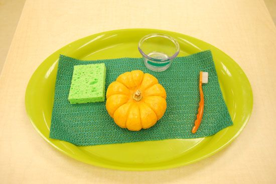 I don't like the tray set up but pumpkin washing would be cute and intriguing !