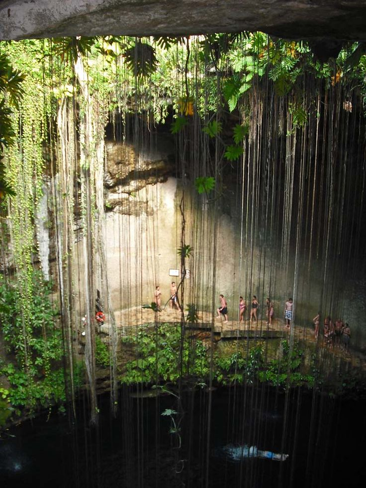 Ik-Kil cenote at ChichenItza, Mexico. Stunning setting. The water is spooky to swim in though, black and seemingly bottomless. Hard to get rid of the Jaws theme music!