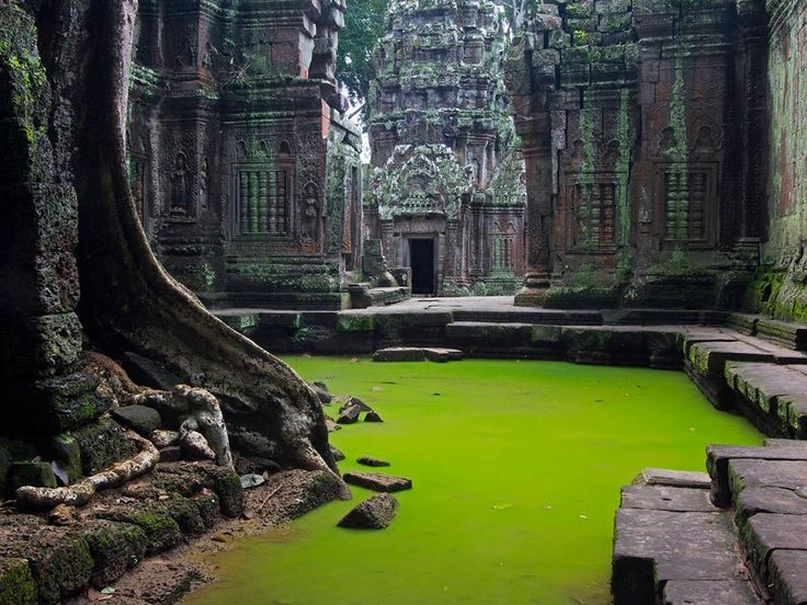 "thekhooll: "" Tomb Raider Ta Prohm is the modern name of a temple at Angkor, Siem Reap Province, Cambodia, built in the Bayon style largely in the late 12th and early 13th centuries and originally..."