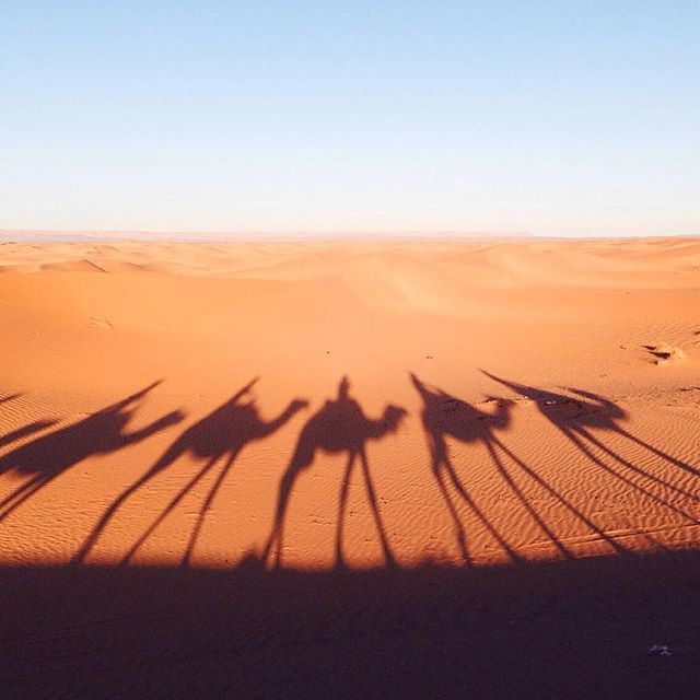 #tbt #photooftheday #vscocam #dslooking #sweetdreamsdlf #merzouga #sahara #morocco #shadows #travel #addicted #explore #liveauthentic #love