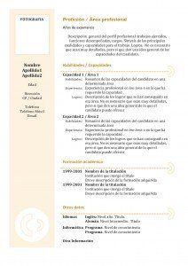Plantillas de Currículum Vitae   Hacer Curriculum                                                                                                                                                                                 Más