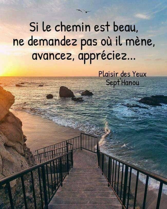 Le Moment Present Quote Citation Great Quotes French Quotes