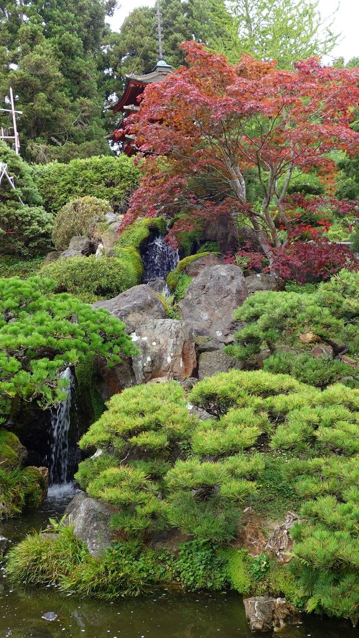 757 Best Images About Japanese Gardens On Pinterest | Gardens Temples And Backyards