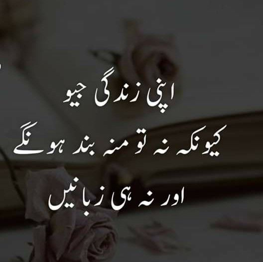 Follow@AijazizangrY   Urdu quotes with images, Old ...