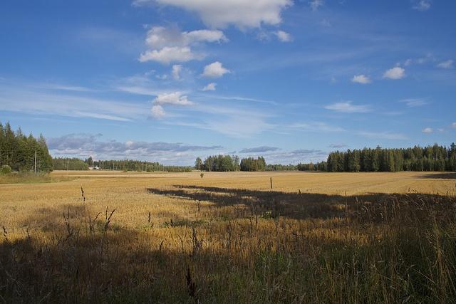 Autumn Fields, via Flickr.