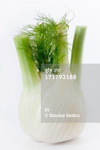Fennel bulb by Emoke Szabo