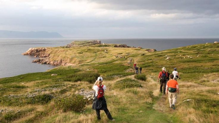 These are Canada's best hiking trails – did your favourite make the list? - The Globe and Mail