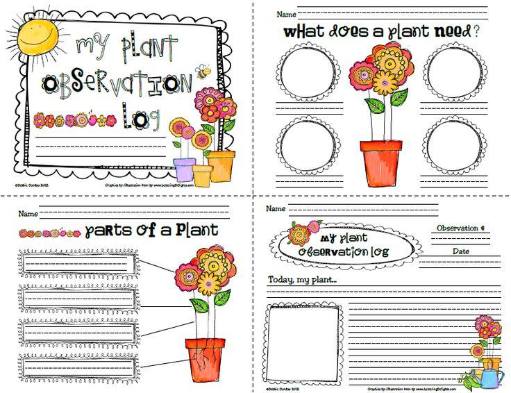 preschool plant journals template sailing through 1st grade plant observation log for the. Black Bedroom Furniture Sets. Home Design Ideas