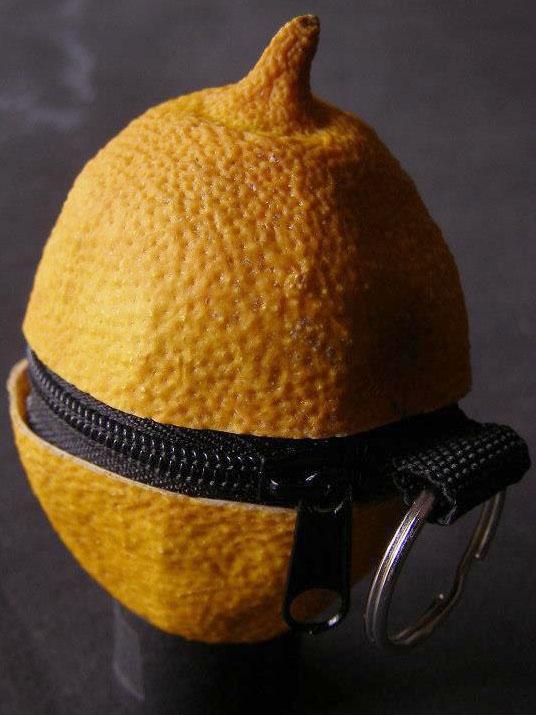 Gagi Limonada de neaga.cosmin Breslo