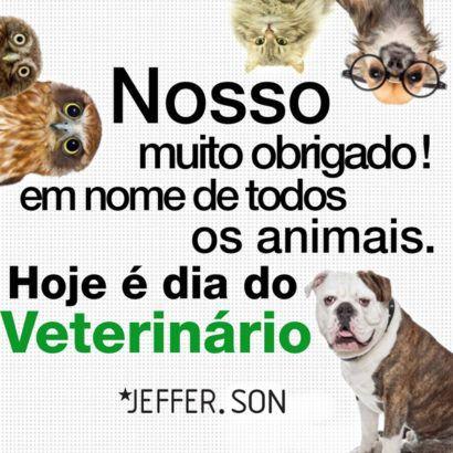 cartões animados para o dia do medico veterinario